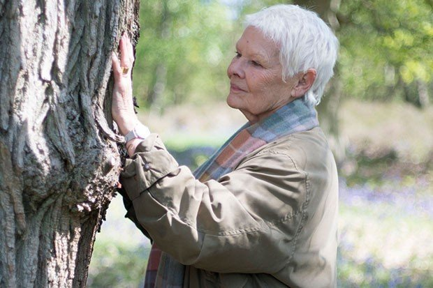 Judi Dench – my passion for trees (BBC1)